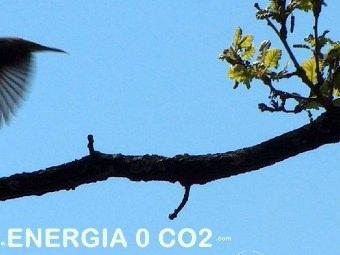 Incentivi pannelli solari Umbria